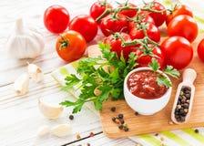 ketchup Salsa för tomatsås Fotografering för Bildbyråer