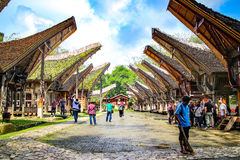 Ketekesu in tana toraja. Ancient village in tana toraja sulawesi indonesia Stock Photography