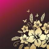 Ketmie. Fond floral. illustration de vecteur