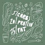 Keto diet doodle style vector illustration . Carbs protein fat in percent . Freehand drawing . royalty free illustration