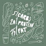 Keto diety doodle stylu wektoru ilustracja Carbs proteinowy sad?o w procentach rysunkowej element?w wolnej r?ki naturalny stylizo royalty ilustracja