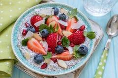 Keto ketogenic, paleo carb diety oatmeal śniadania niska nie owsianka Kokosowy Chia pudding z jagodami, granatowów ziarna Obraz Royalty Free