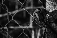 Kette auf Stahlnetz schützen sich vor unberechtigtem Zugriff stockfotografie