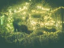 Ketten des Lichtes durch ein eisiges Fenster Stockbilder