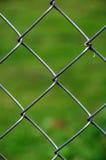Kettenglied-Zaun, grüner Hintergrund lizenzfreie stockbilder