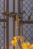 Kettengliedzaun geschlossen mit Vorhängeschloß und Busch stockbilder