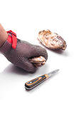 Kettenhandschuhe besonders für Öffnungsaustern stockfotografie