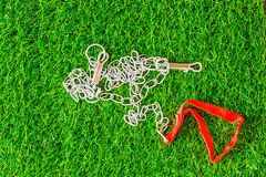 Ketteninterprethunde auf Beschaffenheitshintergrund eco des grünen Grases legen herein lizenzfreies stockfoto