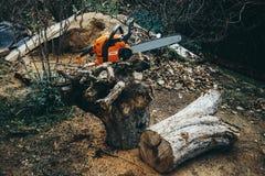 Kettensäge auf den entwurzelten Wurzeln eines Baums und des Klotzes Stockbilder