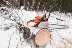 Kettensäge auf Kiefernstumpf der gefallene Baum im Winter Stockfotografie