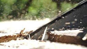 Kettensäge, die draußen hölzerne Bretter im sonniger Tagesabschluß oben sägt Langsame Bewegung stock video footage