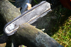 Kettensäge geschnittene hölzerne Klotz Lizenzfreie Stockfotografie