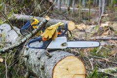 Kettensäge mit Handschuhen auf Baum in zerstörtem Wald stockbild