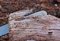 Kettensäge und Holz Stockbilder
