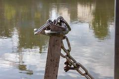 ketting en slot bij zonnige rivieroever stock afbeelding