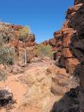 Ketting van vijversgang dichtbij John Hayes rockhole, Trephina-Kloof Stock Afbeeldingen
