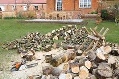 Kettingzaag met brandhout en zaagpaard royalty-vrije stock foto's