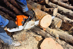 Kettingzaag zagend hout Stock Afbeelding