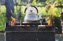 Kettle boils Stock Image