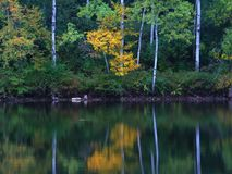 Kettle Moraine Lake Reflection Wisconsin. Beautiful colors reflect off a pond at Kettle Moraine State Forest in Wisconsin royalty free stock images