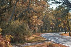 Kettle Moraine State Forest. A road going through the Kettle Moraine State Forest in Eagle, Wisconsin in early fall stock images