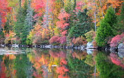 Free Kettle Pond Royalty Free Stock Images - 79552209