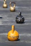 Kettlebell colorido del hierro Fotos de archivo libres de regalías