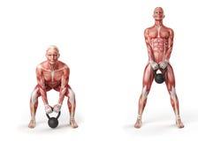 Kettlebell exercise Stock Images