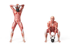 Kettlebell exercise Royalty Free Stock Image