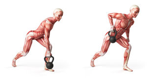 Kettlebell exercise Stock Photography