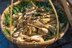 Ketupat在木篮子的米饺子 Ketupat是自然r 库存照片