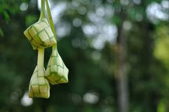 Ketupat on blur background Royalty Free Stock Photography