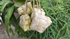 Ketupat, das gekocht worden ist Stockfoto