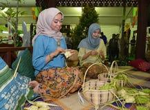 Ketupat stock photography
