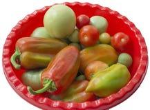 Keuken-tuin oogst Royalty-vrije Stock Foto