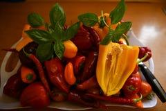 Keuken, voedsel kleurrijke peper met een basilicumblad stock afbeeldingen