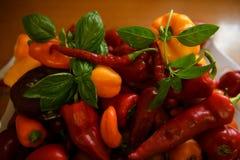 Keuken, voedsel kleurrijke peper met een basilicumblad royalty-vrije stock afbeeldingen