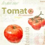 Keukenart. Waterverf uitstekende tomaat Stock Foto