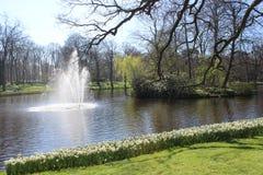 Keukenhof公园在荷兰 免版税图库摄影