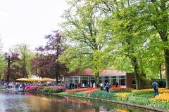 KEUKENHOF, ΟΙ ΚΑΤΩ ΧΏΡΕΣ - 10 ΜΑΐΟΥ 2015: Ανθίζοντας λουλούδια με Στοκ φωτογραφίες με δικαίωμα ελεύθερης χρήσης