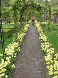 Keukenhof Stock Photo