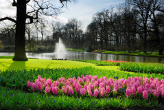 Keukenhof Royalty Free Stock Images
