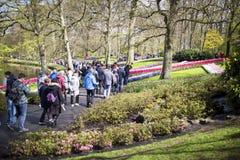 Keukenhof, de bloemtuin in Nederland Stock Fotografie