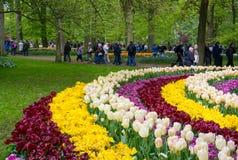 The Keukenhof flower garden near Lisse. royalty free stock photo