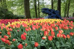 Art with tulips in the Keukenhof Royalty Free Stock Photography