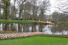 Keukenhof-Gärten in den Niederlanden Lizenzfreies Stockbild