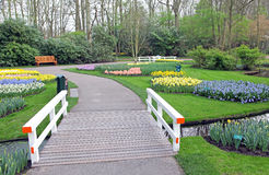 Keukenhof - Garden of Europe, Netherlands Royalty Free Stock Photography