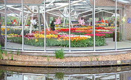 Keukenhof - Garden of Europe, Netherlands Royalty Free Stock Image