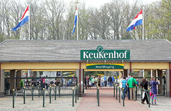Keukenhof - Garden of Europe, Netherlands Stock Photos