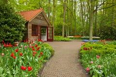 Keukenhof garden, Holland Stock Photos